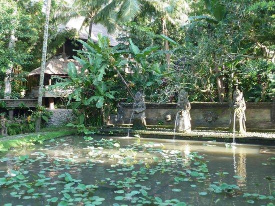 Arma Museum & Resort : large decorative pool