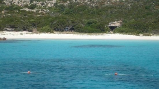 TUI Family Life Janna e sole : Plages des îles de la Maddalena