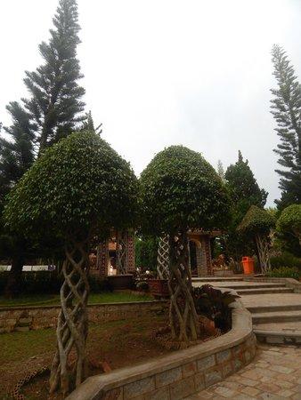 Thien Vien Truc Lam: Необычные деревья