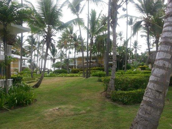 Grand Palladium Bavaro Suites Resort & Spa: Near Villa 55, grounds