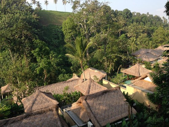 The Lokha Ubud: View of the villas from a suite room