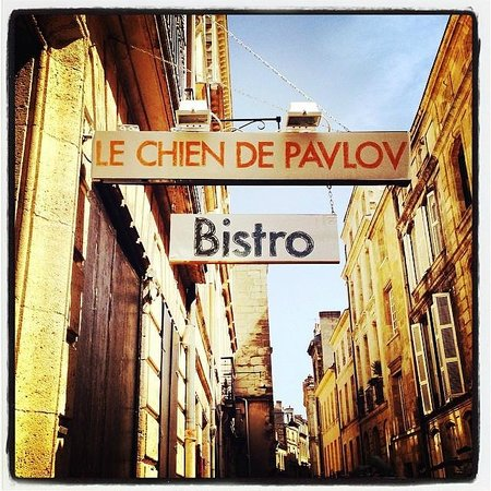 restaurant le chien de pavlov dans bordeaux avec cuisine. Black Bedroom Furniture Sets. Home Design Ideas
