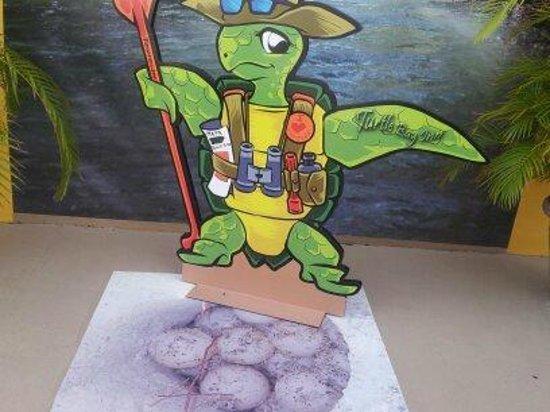 Turtle Bay Inn: la mascota