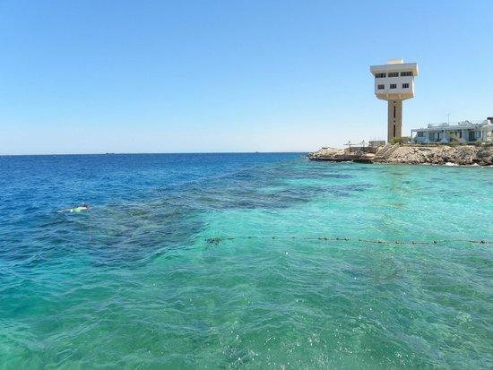 Arabella Azur Resort: Strand 2 met huisrif 2