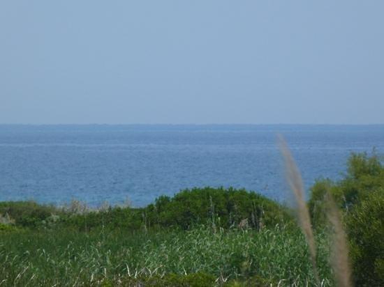 Cala Fiorita : la mer a quelques metres