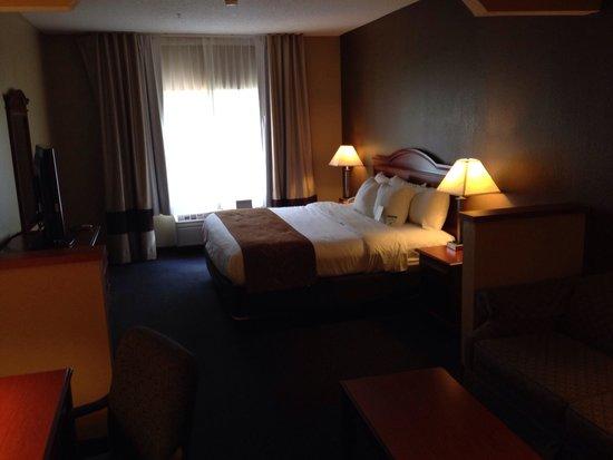 Comfort Suites Auburn: Room 224