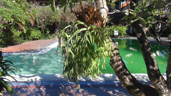 Bumas Hotel: swimming pool