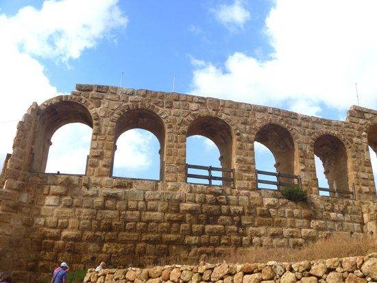 Ruinas de Jerash: Джераш
