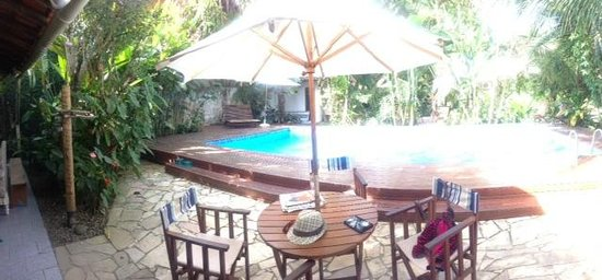 Eliconial: The pool overlooked by a parrot and a family of monkeys!