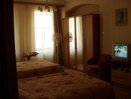 Helvetia Deluxe Hotel : стандарт
