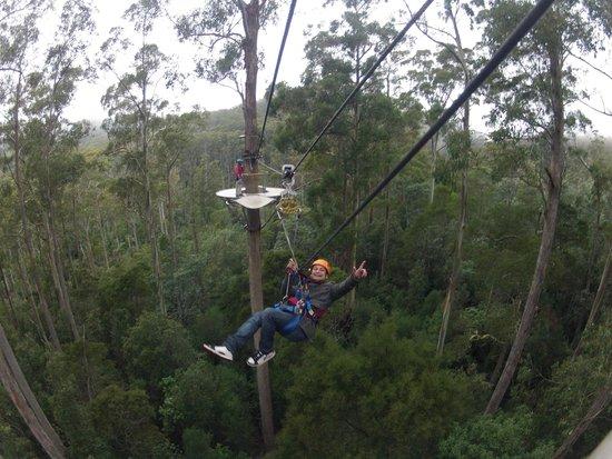 Hollybank Treetops Adventure: Ashish and Divya