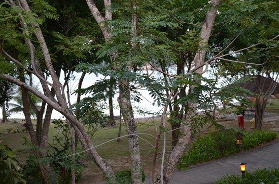 Vivanta by Taj Rebak Island, Langkawi: view from the room