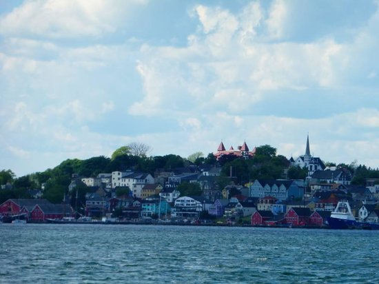 Lunenburg Whale Watching Tours : Coming back to Lunenburg