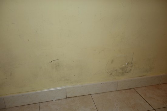 Villa Rosa Hotel: Wall stains and mold