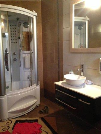 Gaia Garden: Shower room