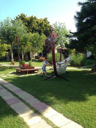 Gaia Garden: Gardens and hammock