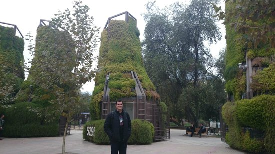 Parque Araucano: Entrada do parque