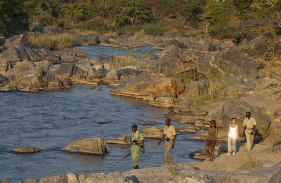 Mkulumadzi Lodge: Walking Safaris