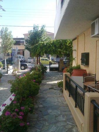 Camelia Studios & Apartments