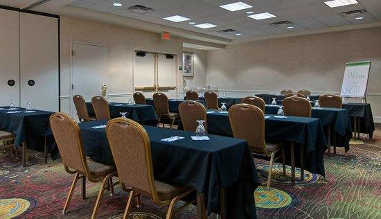 Hilton Garden Inn Detroit Metro Airport: Spartan Meeting Room