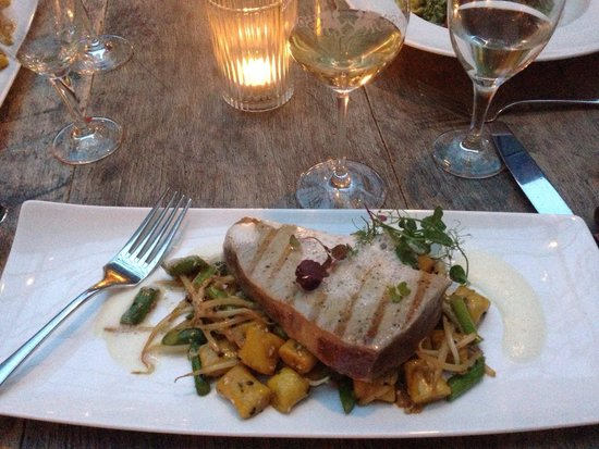 seared tuna steak with asparagus bean sprouts gnocchi picture of die graifen traben. Black Bedroom Furniture Sets. Home Design Ideas