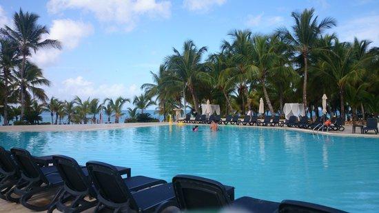 Viva Wyndham Dominicus Palace: Una de las piscinas con mejor vista