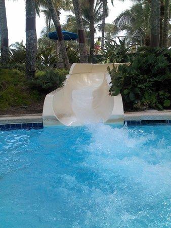 Margaritaville Vacation Club Wyndham Rio Mar: La chorrerra fabulosa para adultos y niños