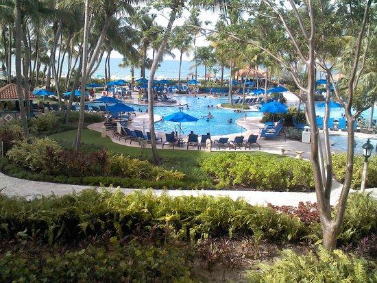 Margaritaville Vacation Club Wyndham Rio Mar: La vista desde mi habitación
