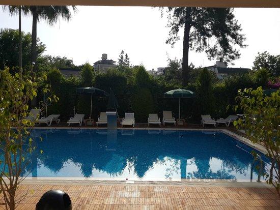 Ambassador Plaza Hotel : бассейн в 5 корпусе