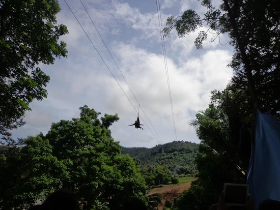 Dakak Park & Beach Resort: zip line