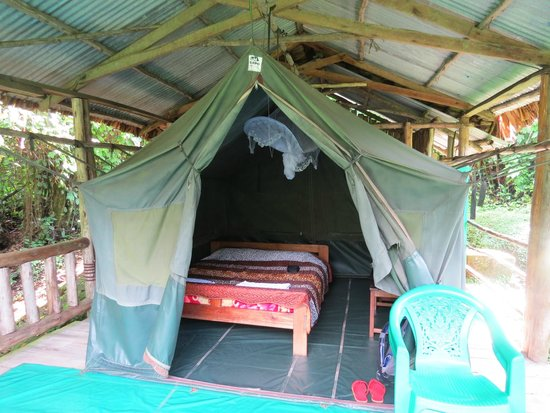 The Buhoma Community Rest Camp: Tent