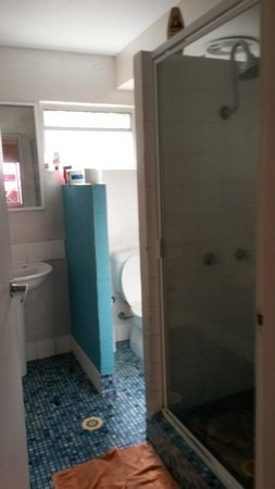 Dolphins Beach House: 1 toilet n shower between 8 ppl when the hot water is turned off for several hours a day is not