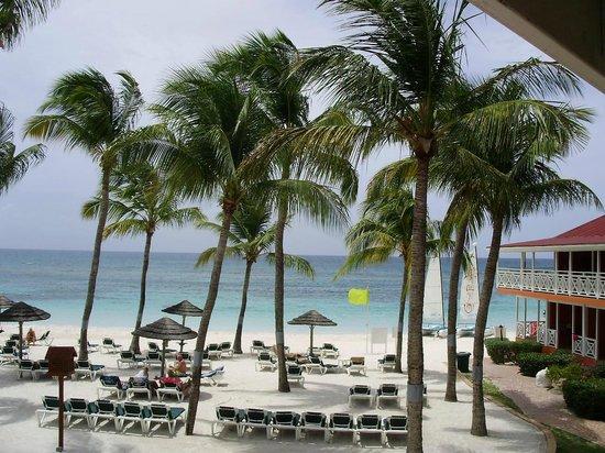 Pineapple Beach Club Antigua: Great shade those palm trees....helped to prevent sunburn