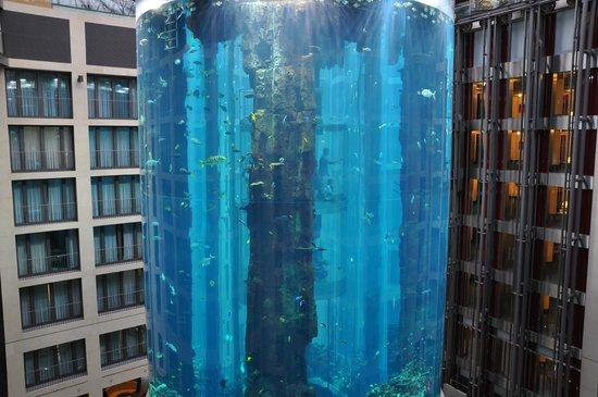 Radisson Blu Hotel, Berlin: l'aquarium de l'hotel