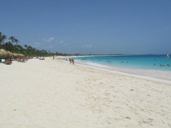 Royalton Punta Cana Resort & Casino: love it