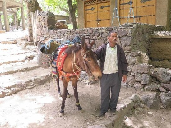 Kasbah Du Toubkal : Muleteer with our Luggage