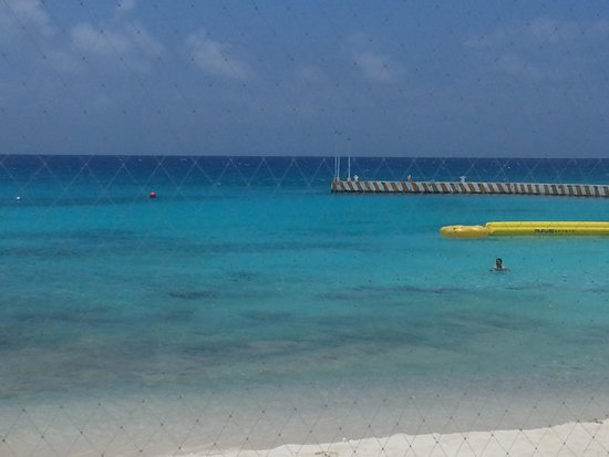 El Cozumeleno Beach Resort: snorkel in front of hotel