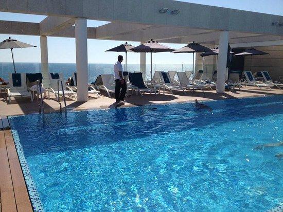 The Ritz-Carlton, Herzliya : Roof top Pool