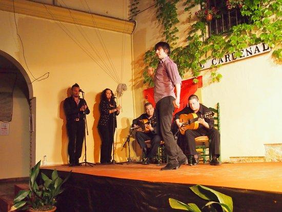 Tablao Flamenco Cardenal : Этот парень завёл весь зал