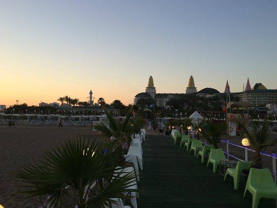 Delphin Diva Premiere : Beach area