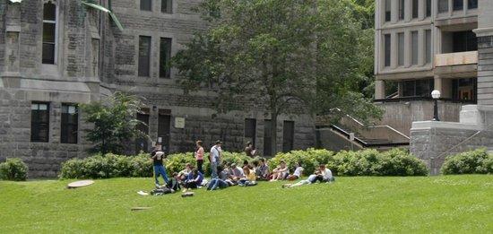 McGill University : O campus dos sonhos!