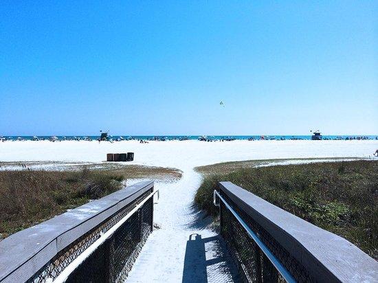 The Beach Club Siesta 1 In Usa