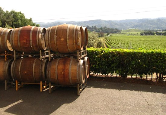 Photo of Tourist Attraction Regusci Winery at 5584 Silverado Trl, Napa, CA 94558, United States