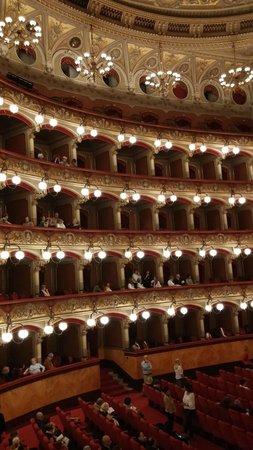 Teatro Massimo Bellini: General interior view
