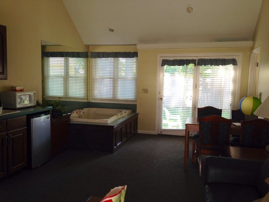 Holly Tree Resort: Part of the living room in one bedroom suit