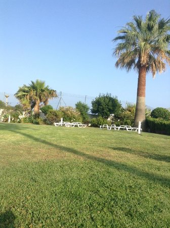 Hotel Almar : Grounds next to the pool