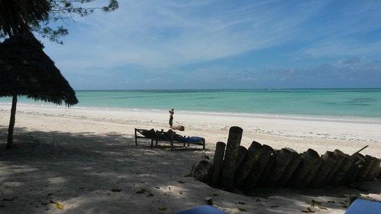 Ndame Beach Lodge Zanzibar: Strand