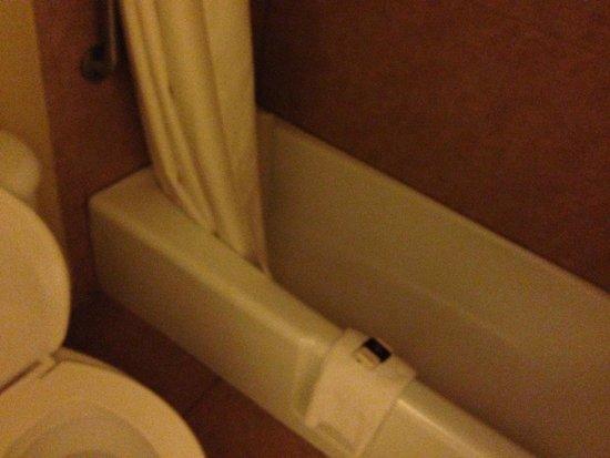 Rosen Inn International: bathroom was a good size