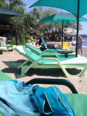Ada Camping: Nice beach