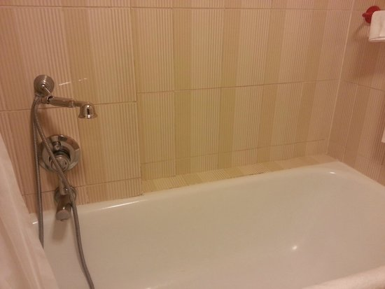 Hotel Pineta Palace : la vasca e le piastrelle